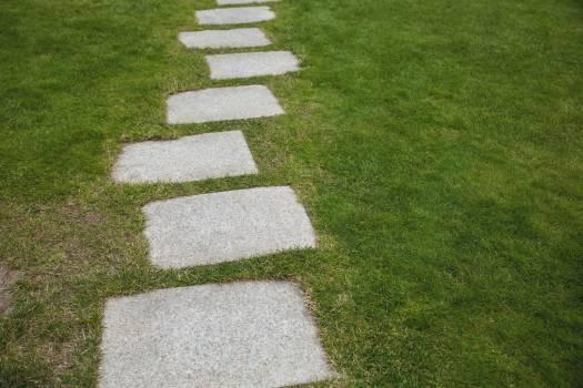 Cement walkway in the garden #413309