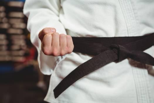 Karate player performing karate stance #413336