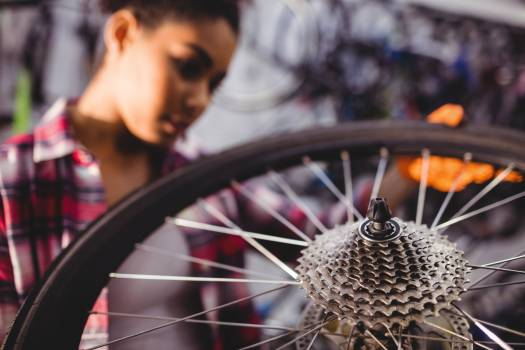 Mechanic examining a bicycle wheel Free Photo