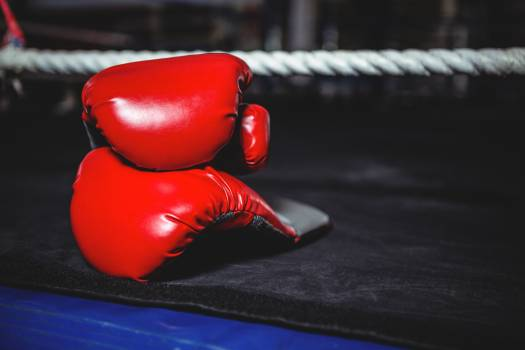 Pair of red boxing gloves #413519