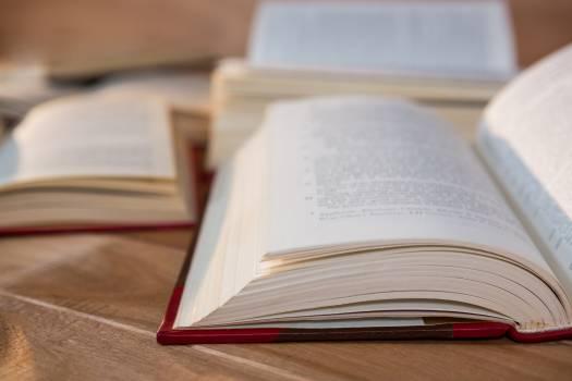 Close-up of various open book #413524