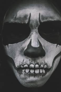 Man Scary Costume Skull Makeup Free Photo #413730