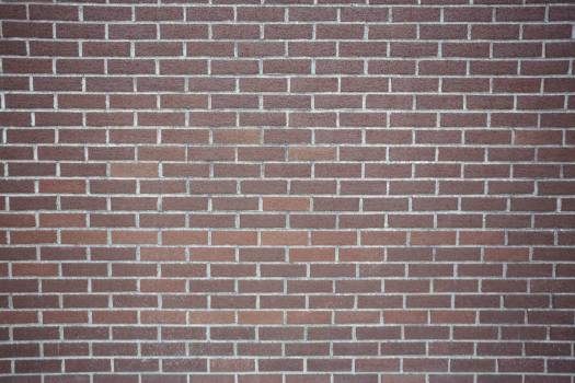 New brick wall background #414238