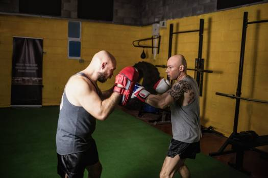 Boxers practicing boxing in the fitness studio #414259
