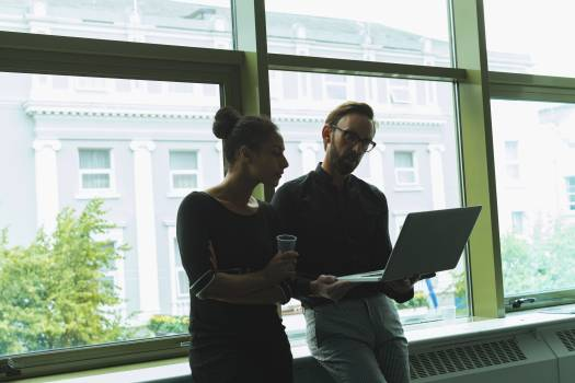 Executives using laptop near window #414544