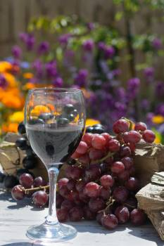 Clear Wine Glass Near Grape Fruit Free Photo