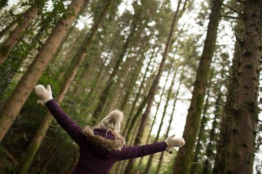 Woman standing in the forest with her arms wide open #414647