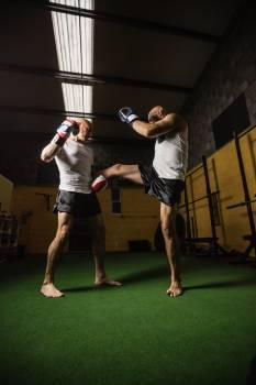 Two boxer practicing boxing in fitness studio #414648