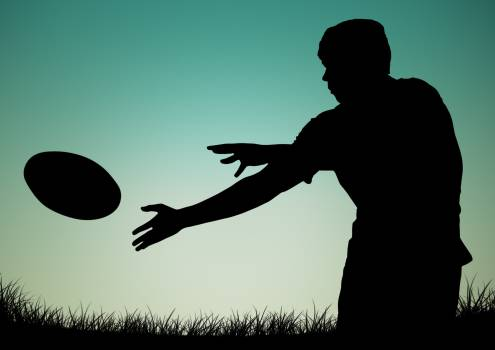 Silhouette of player catching a ball #414681