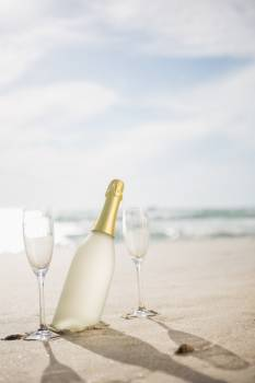 Champagne bottle and two glasses on sand #414756