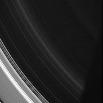 Spirals in the D Ring #415060