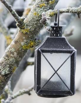 perfume Free Photo