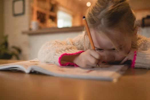 Attentive girl doing her homework in living room #415345