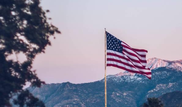 Flag Flagpole Emblem #415476