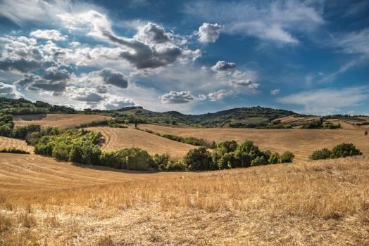 landscape #415727