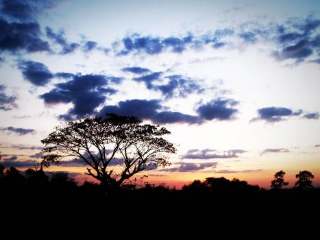 Photo of Sunset #41582