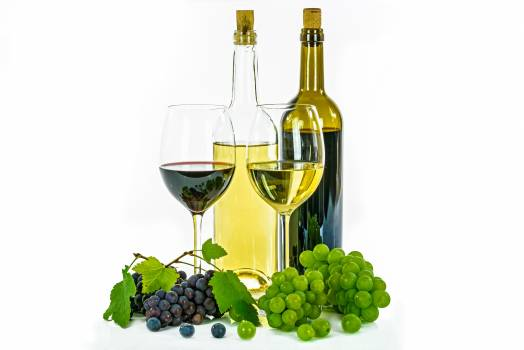 Wine Alcohol Vineyard #415898