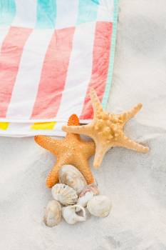 Starfish, sea shells and beach blanket on sand #415926