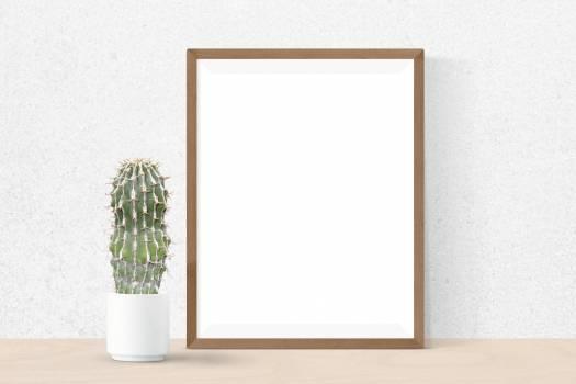 frame #416101