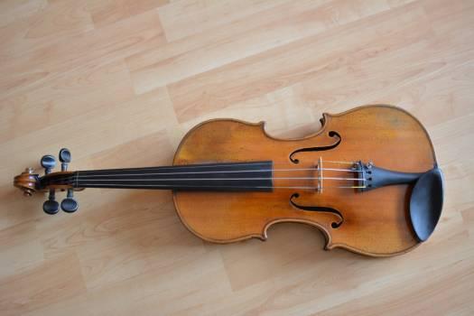 violin #416367