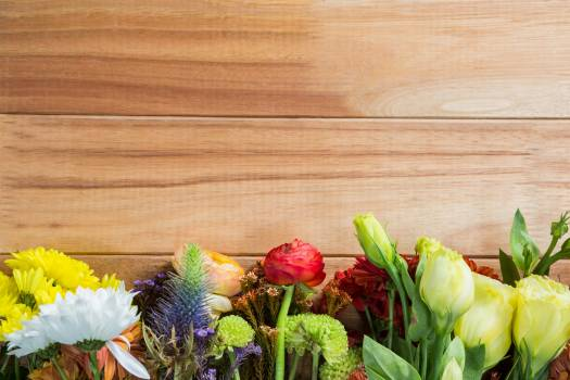 flowers arranged on wooden board #416461