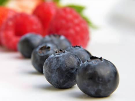 blueberry #416463
