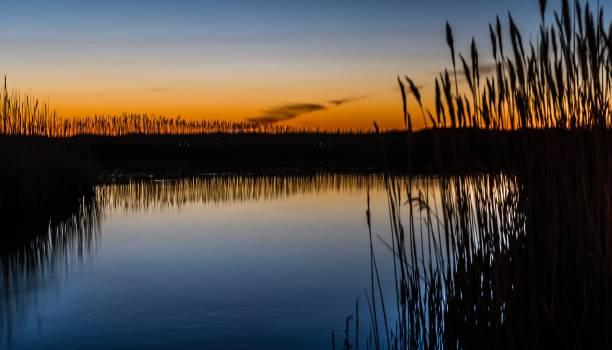 Sun Sky Reflection #416530