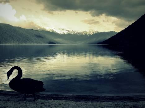 lakeside #416880