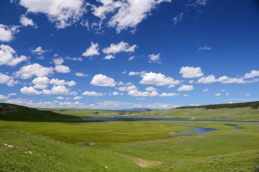 grassland #417024