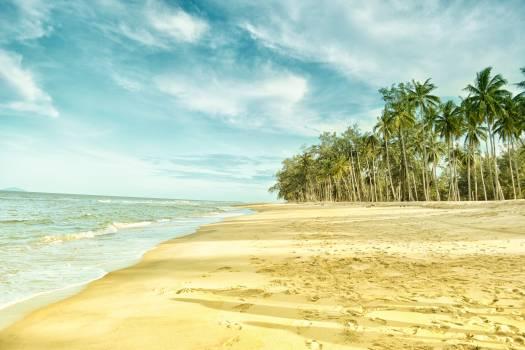 Sandbar Beach Bar #417125