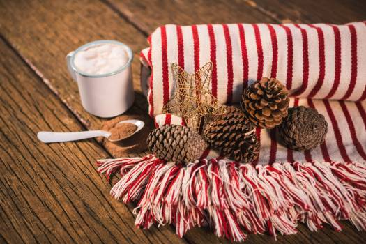 Rolled blanket with pine cone and coffee mug #417353