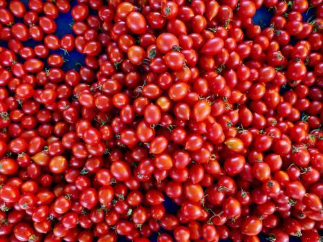 Berry Fruit Food #417391