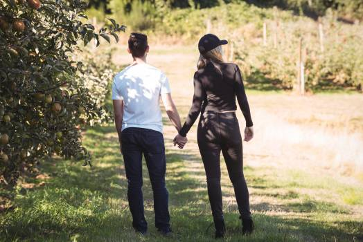 Couple holding hands and looking at apple orchard #417459