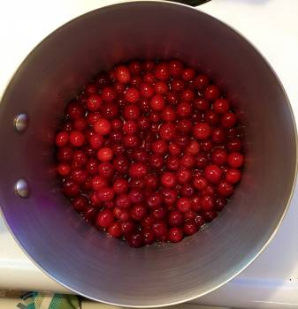 berry #417555