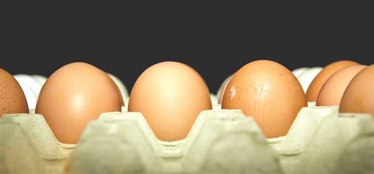 Food eggs Free Photo