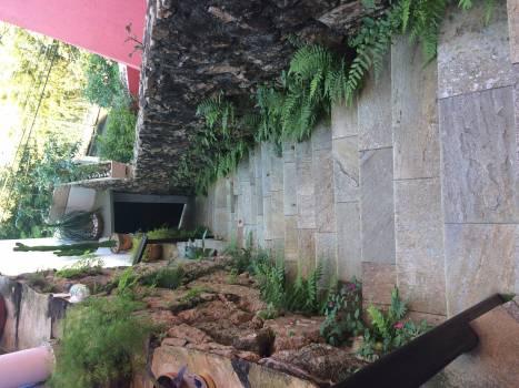 Garden Greenhouse Summer #417670