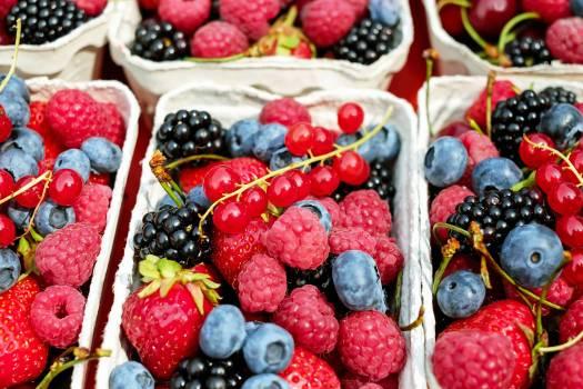 fruit #417736