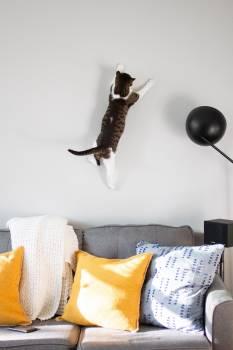 Pillow Furniture Lamp #417825