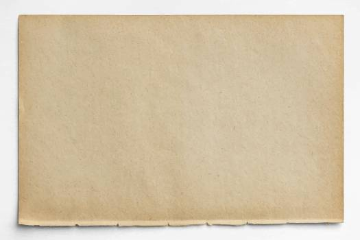 Blank brown paper design vector #417872
