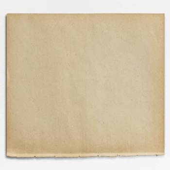 Blank brown paper design vector #417873