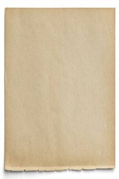 Blank brown paper design vector #417874