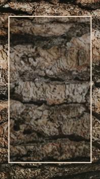 Rectangle frame on wood mobile screen wallpaper #417977