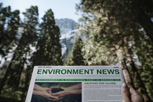 Environment newspaper in a woods #417978