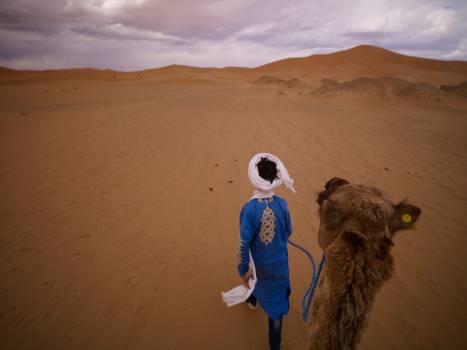 Dune Desert Sand #417992