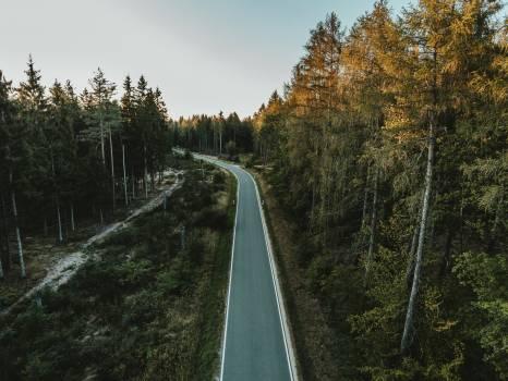 Track Road Landscape #418001