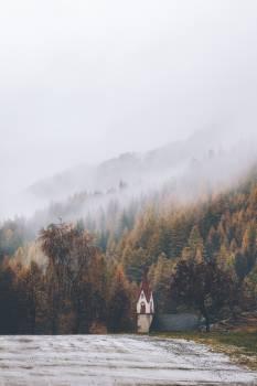 Mountain Landscape Forest #418199