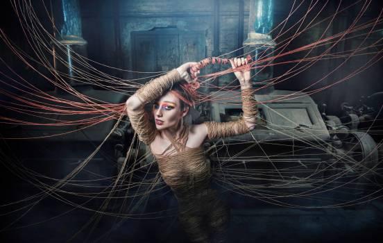 Spider web Web Cobweb #418280