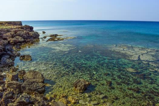 ocean Free Photo