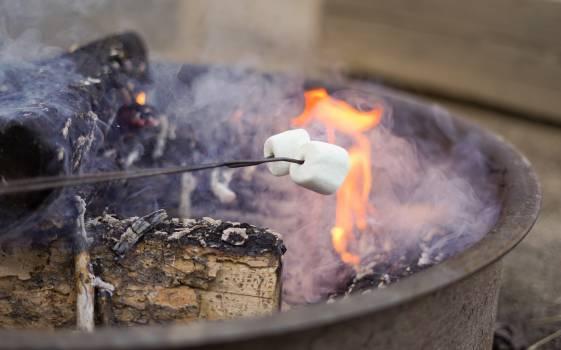 Barbecue Heat Fire Free Photo