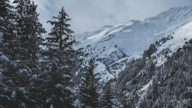 Mountain Snow Range #418581